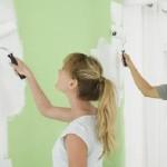 Какую краску выбрать для покраски стены? (часть 1)